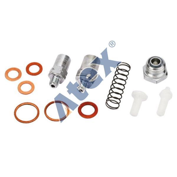 210-040843 7420768698 Fuel Pump Valve Kit