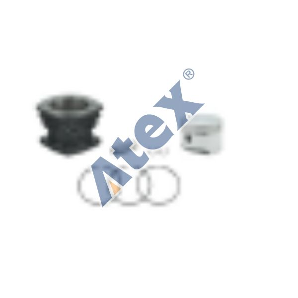 224-23010  Cylinder Liner, With Piston and Rings)