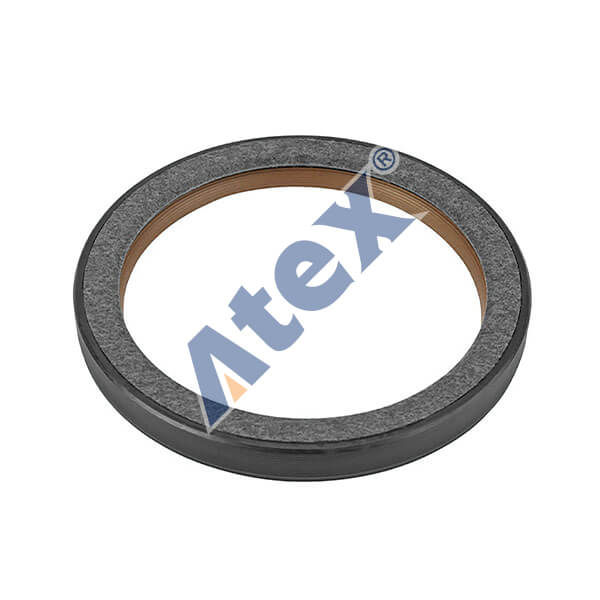 500-59806 5010359806 Seal Ring,Front
